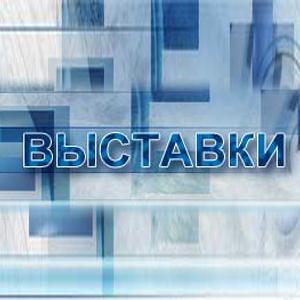 Выставки Комсомольского